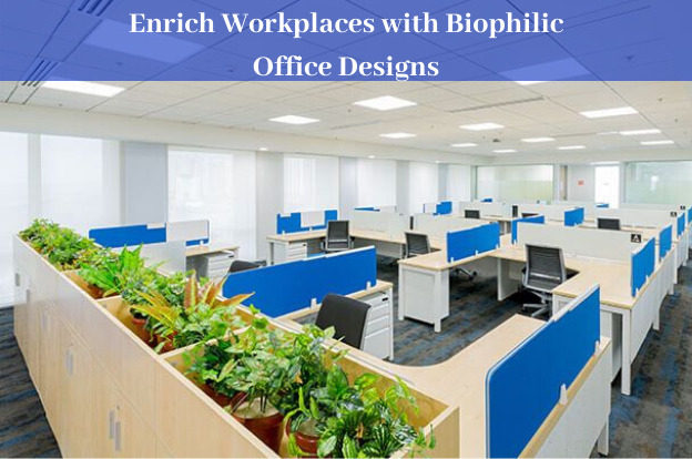 Enrich Workplaces with Biophilic Office Designs